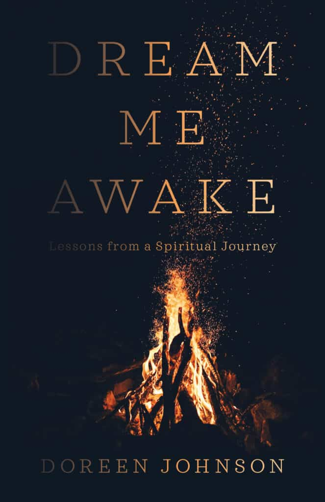 front cover of the book Dream Me Awake